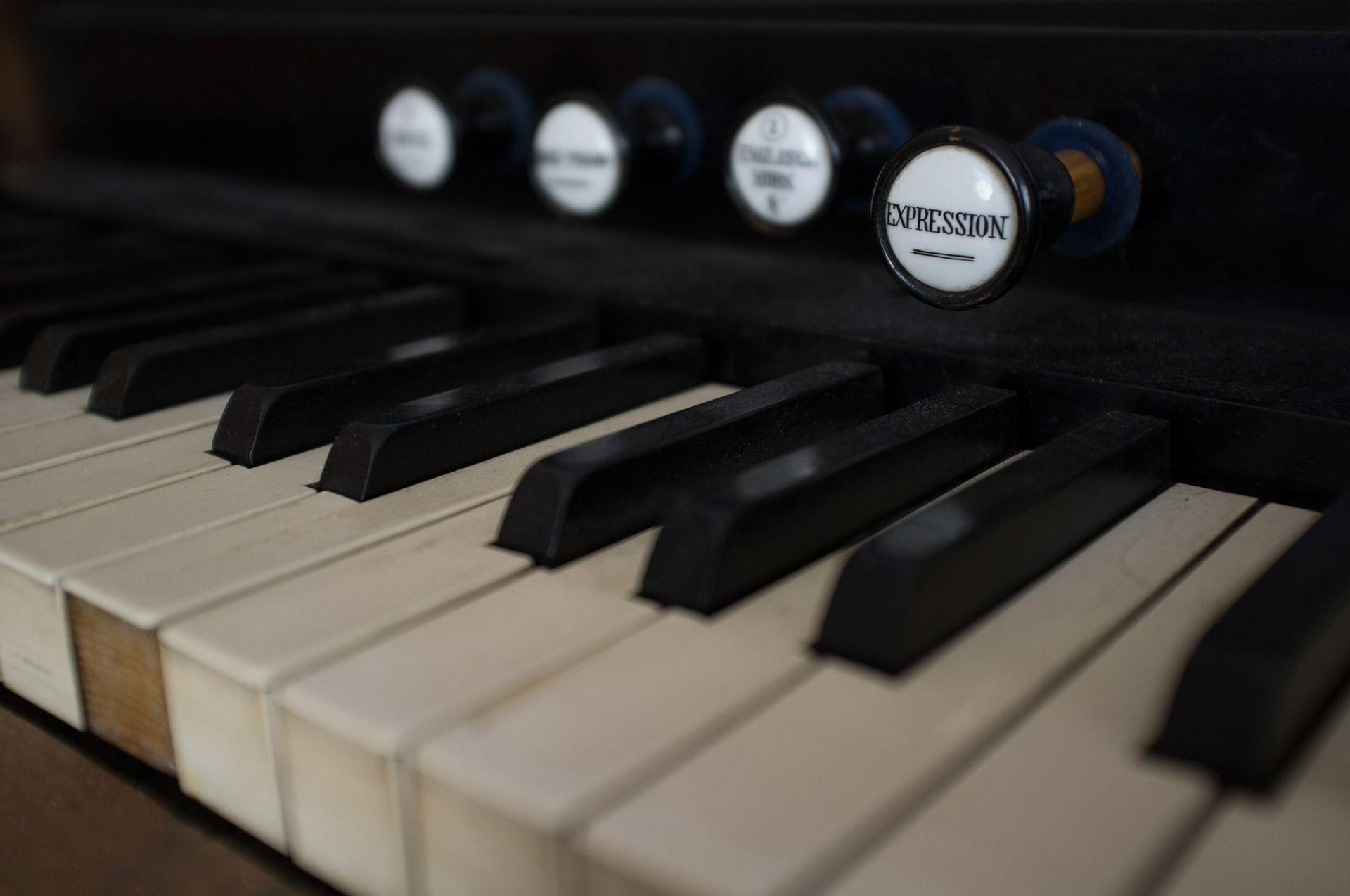 blog 12 muziek als hersengym harmonium-552685_1920